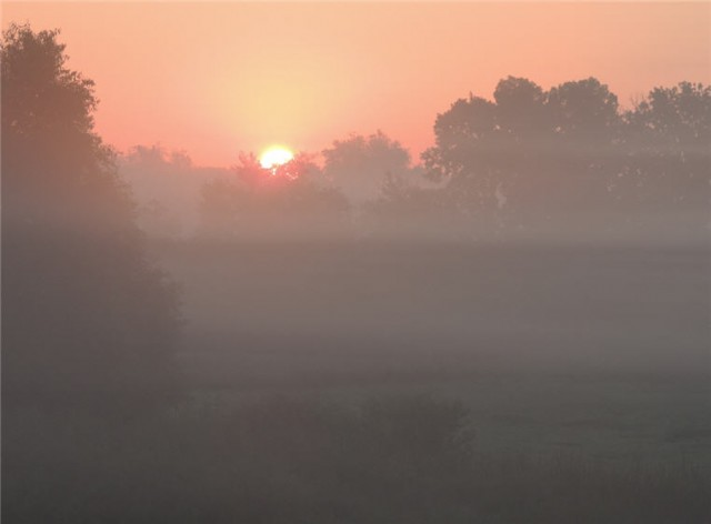 Sunrise Through the Fog, Dodge County, Wisconsin
