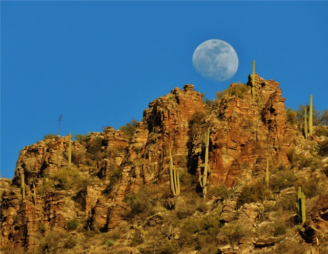 Moonrise, Sabino Canyon Recreation Area - Tucson, Arizona