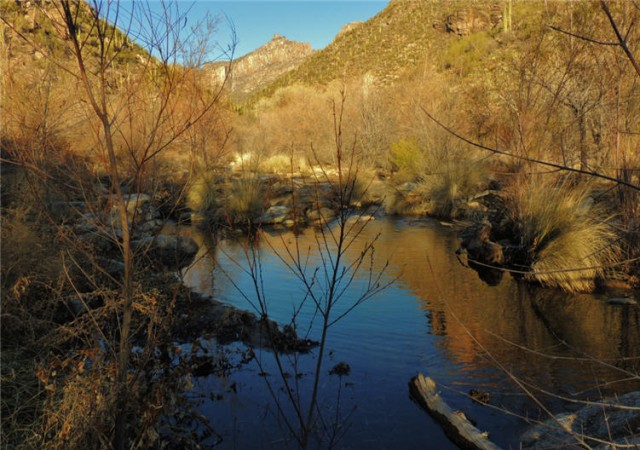 Sabino Creek, Sabino Canyon Recreation Area - Tucson, Arizona