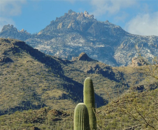 Santa Catalina Mountains, Sabino Canyon Recreation Area - Tucson, AZ