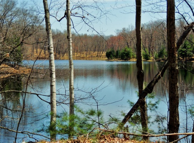 Riley Lake in Chippewa County Forest