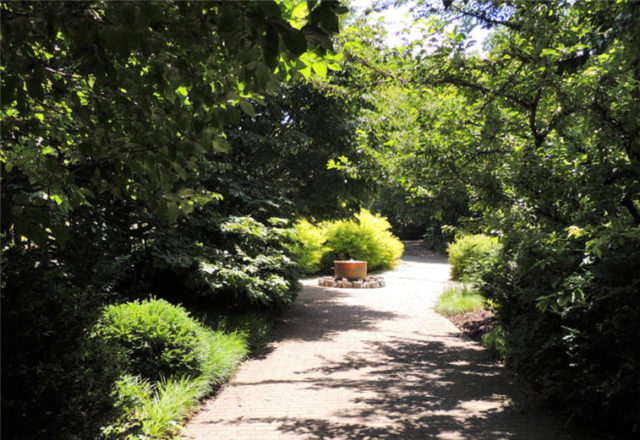 Path to Fountain, Olbrich Gardens