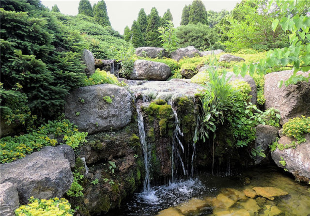 Waterfall, Olbrich Gardens