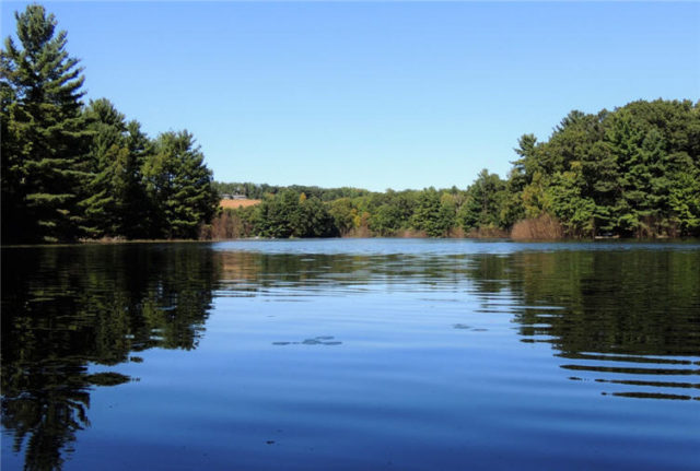 Lake, south-shattuck-lake