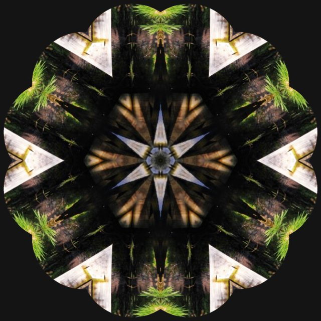 Garden Kaleidoscope At Olbrich >> My Wisconsin Space Kaleidoscope Image Of Footbridge Reflection